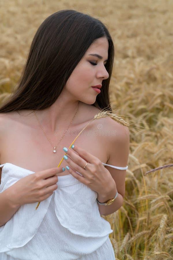 Ein Mädchen in einer weißen Sommerklage steht auf einem Gebiet des Weizens Das Mädchen hält Weizenähren in ihren Händen stockfotografie