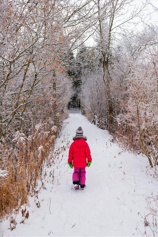 Ein Mädchen geht in den Wald auf einem schneebedeckten Weg lizenzfreie stockbilder