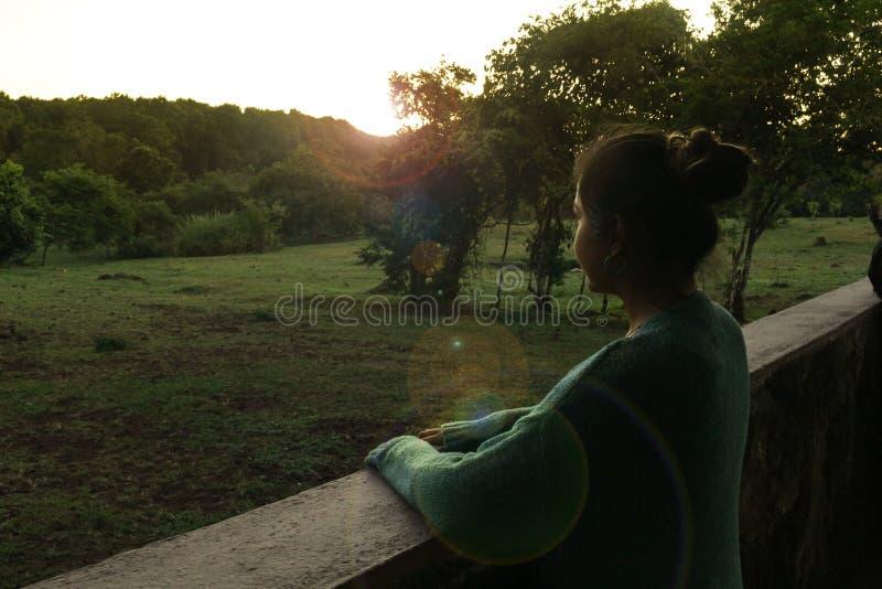 Ein Mädchen genießt einen schönen Sonnenuntergang vom Fenster einer Kabine vor einem Feld stockbild