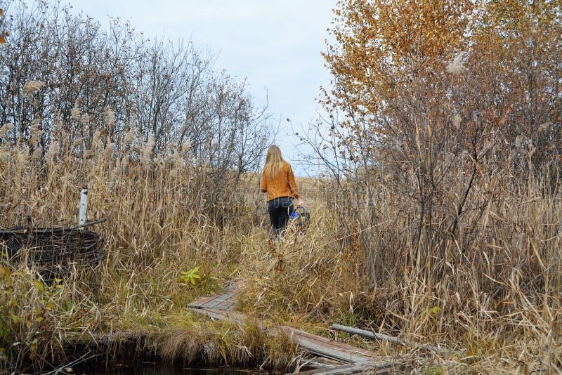 Ein Mädchen ist am Waldfrühling lizenzfreie stockbilder
