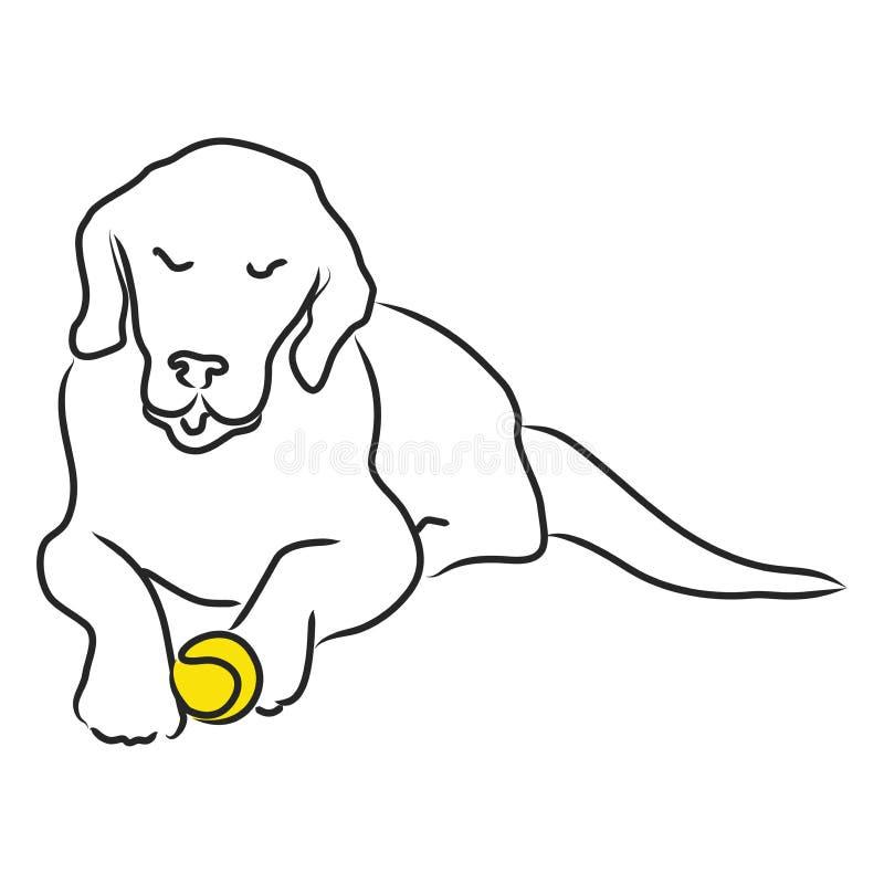 Ein müder goldener Apportierhund stock abbildung