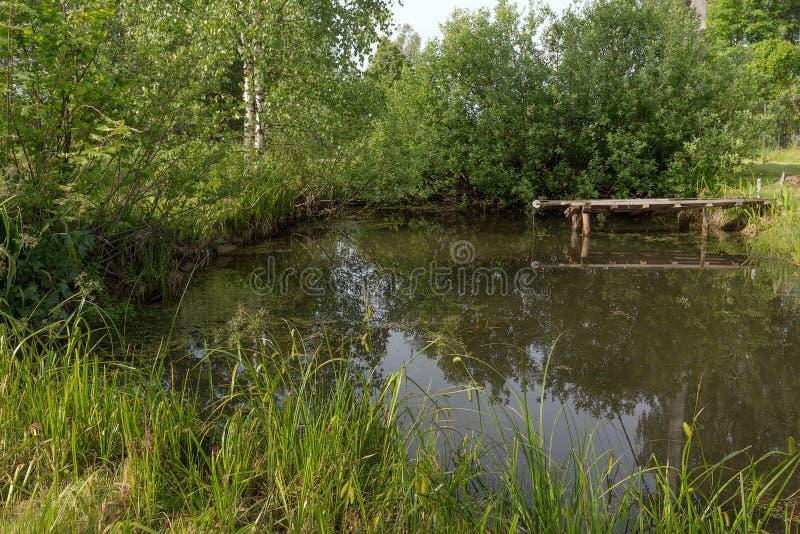 Ein malerischer Teich mit einer Brücke unter den grünen Dickichten lizenzfreie stockfotografie