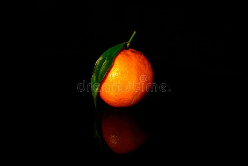 Ein Mandarin-Blatt isoliert auf schwarz mit Reflexion lizenzfreies stockfoto