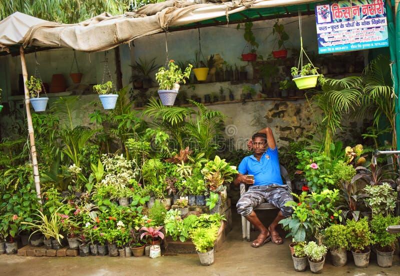 Ein Mann, der Blumen und Pflanzen auf der Straße in ganganagar, Indien, verkauft lizenzfreies stockfoto
