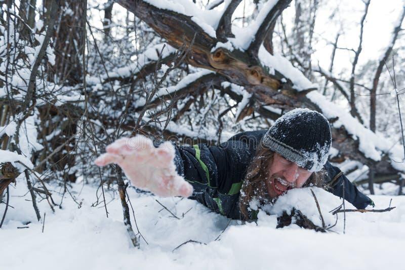 Ein Mann, der für sein Leben unter einem gefallenen Baum in einem tiefen Schnee kämpft lizenzfreie stockbilder