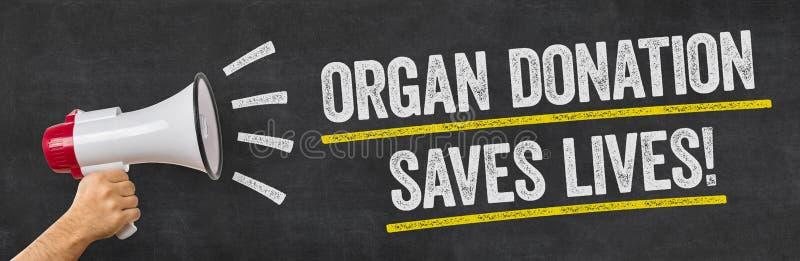 Ein Mann, der ein Megaphon hält - Organspende rettet die Leben lizenzfreie stockbilder