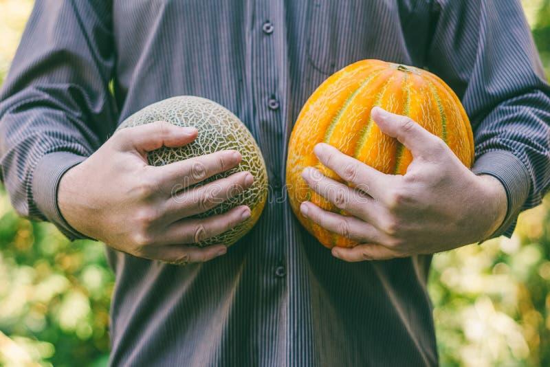 Ein Mann, der reife Melonen hält lizenzfreie stockfotos