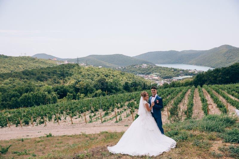 Ein Mann in einem strengen Anzug und in einem Mädchen in einem vornehmen Hochzeitskleid, das in der Natur unter Weinbergen, Berge stockfoto