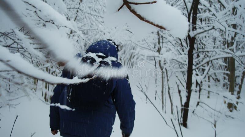 Ein Mann geht durch den Winterwald 2 lizenzfreies stockfoto