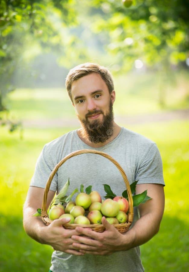Ein Mann mit einem Bart, lächelnd und halten einen Korb von Äpfeln auf einem natürlichen grünen Hintergrund, Abschluss hoch stockfoto