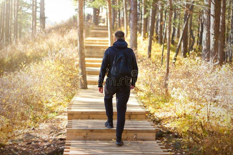 Ein Mann mit einem Rucksack herauf die Treppe im Wald Sonniges Holz Hölzernes Treppenhaus stockfotografie
