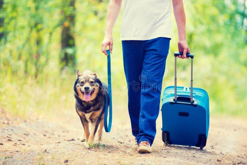 Ein Mann mit einer Reisetasche einen Hund entlang einer Landstraße gehend lizenzfreies stockbild