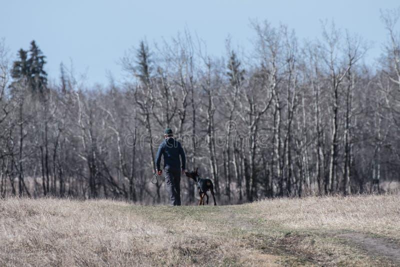 Ein Mann und sein Hund stockfotografie