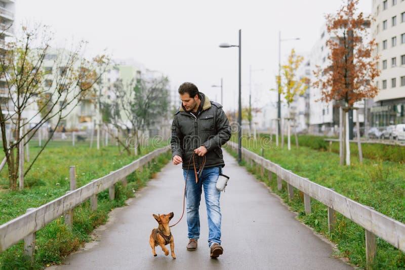 Ein Mann und sein kleiner Hund üben 'das Gehen, zum im Park auf den Fersen zu folgen ' lizenzfreie stockbilder
