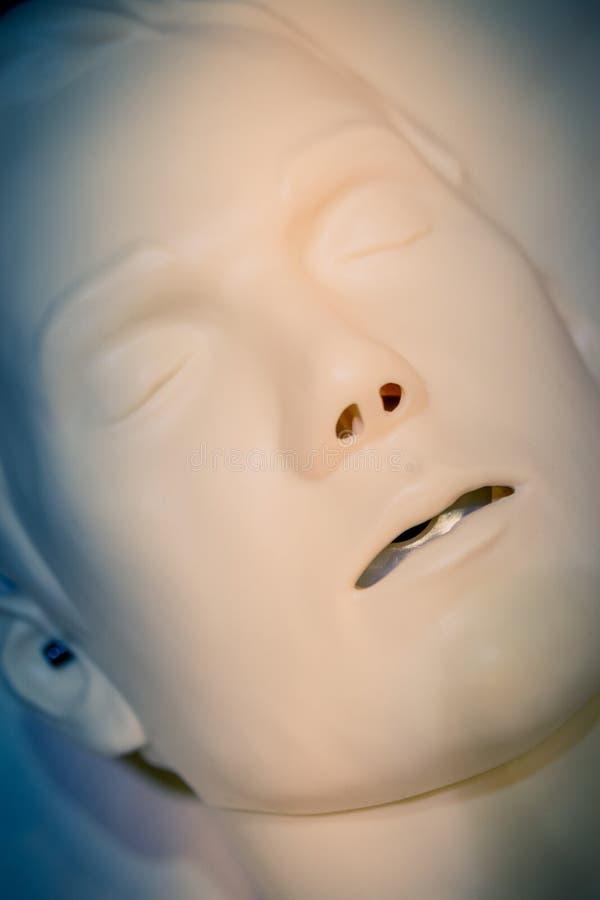 Ein Mannequin-Gesichtsmann des Plans medizinischer mit offener Mundnahaufnahme, stockbilder