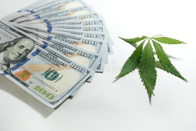 Ein Marihuanablatt liegt nahe bei hundert Dollarscheinen auf einem weißen Hintergrund Geld und Hanf Das Konzept der Legalisierung lizenzfreies stockbild