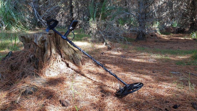 Ein Metalldetektor in einem Wald stockbild