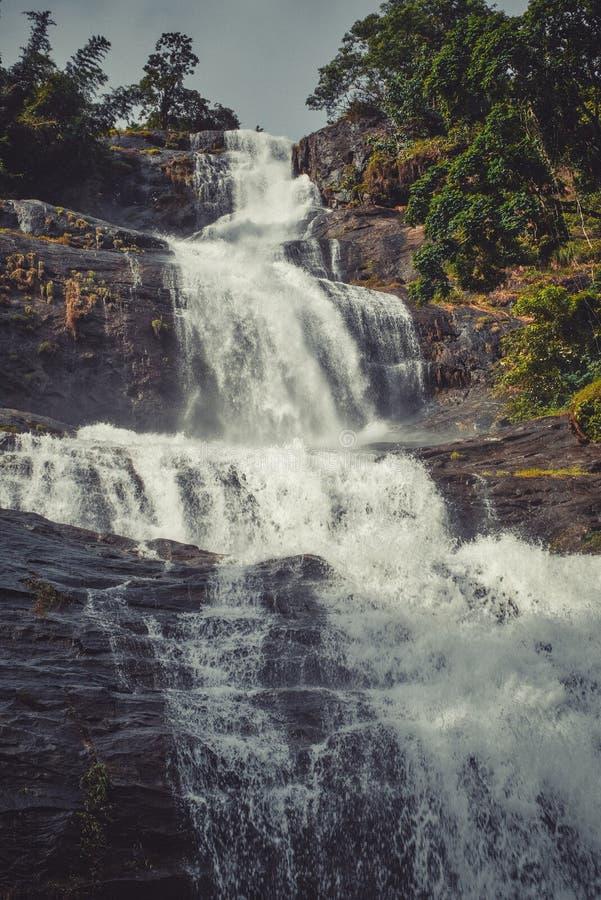 Ein milchiger Wasserfall stockfotografie