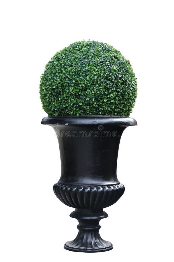 Ein moderner Blumentopf lokalisiert, Beschneidungspfad eingeschlossen lizenzfreies stockfoto