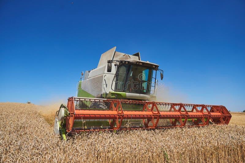 Ein moderner Mähdrescher, der ein Weizenfeld bearbeitet stockbild
