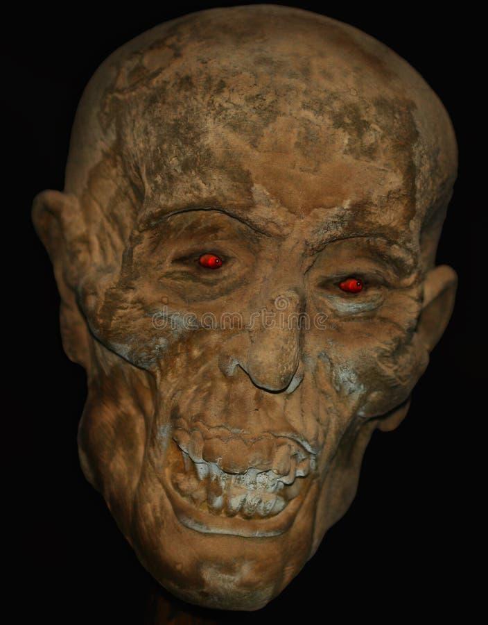 Ein Mummified Kopf lizenzfreies stockbild