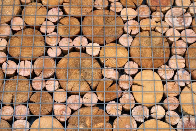 Ein Muster von den Enden von Holzbalken des Kreisquerschnitts stockbild
