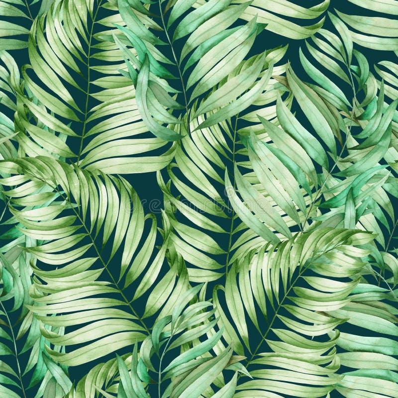 Ein nahtloses Muster mit den Aquarellniederlassungen der Blätter einer Palme gemalt auf einem dunkelgrünen Hintergrund stock abbildung