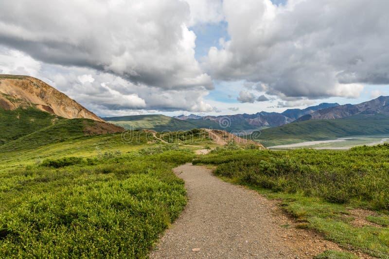 Ein Nationalpark-Wanderweg Denali lizenzfreie stockfotografie