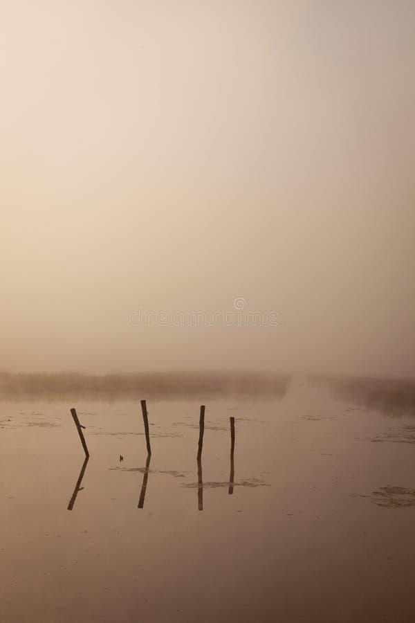 Ein nebelhafter Morgen durch den See Raum für Text stockfoto