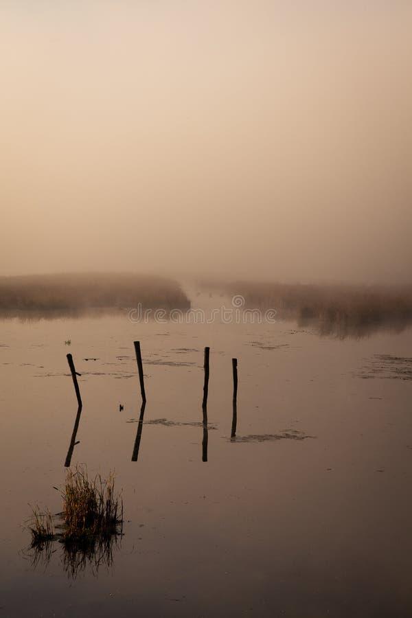 Ein nebelhafter Morgen durch den See Raum für Text lizenzfreies stockbild