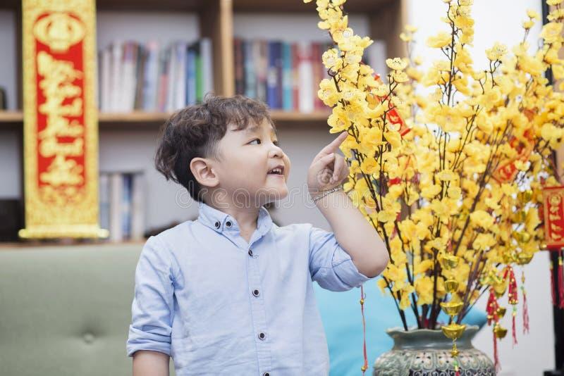 Ein netter asiatischer Junge durch die Aprikosenblume stockbild