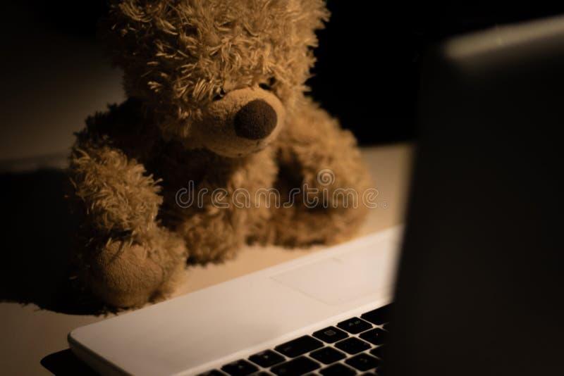 Ein netter und moderner Teddybär stockfotografie