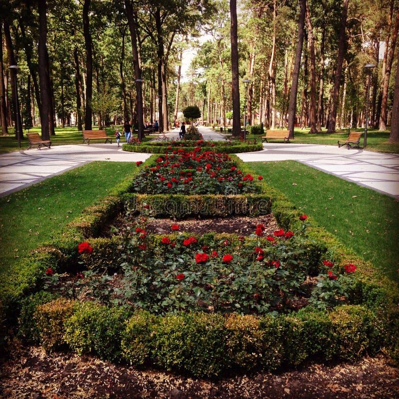 Ein neuer Park in Irpen, Ukraine lizenzfreies stockbild
