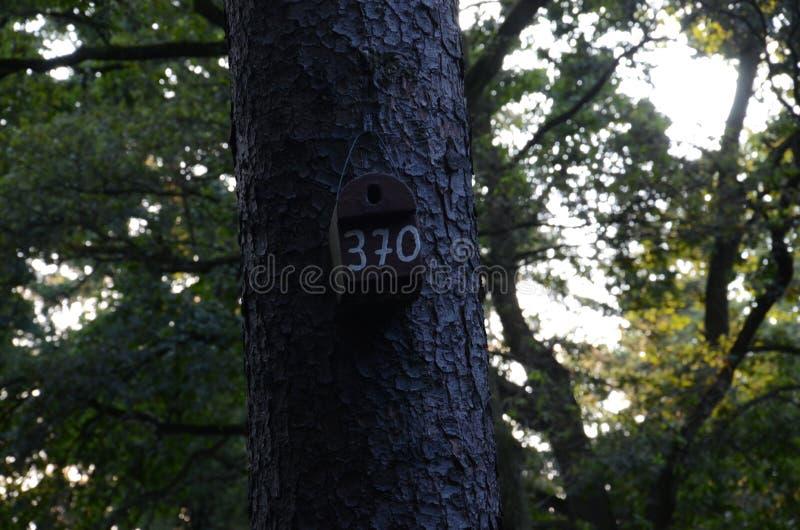 Ein numerierter Kasten lizenzfreie stockfotografie