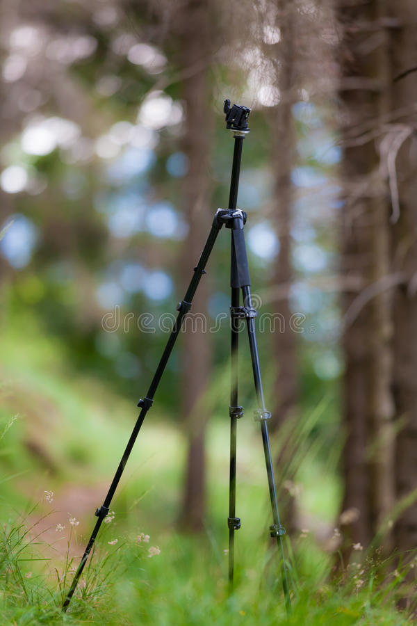 Ein offener Stativ, ohne angebrachte Kamera, in einem Sommerberg für stockbilder