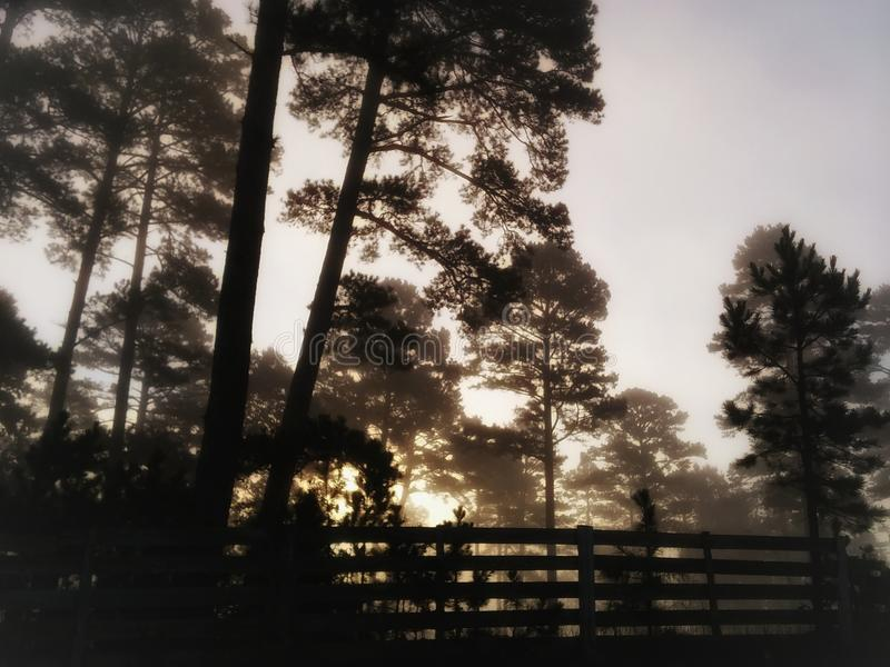 Ein ozark Sonnenaufgang lizenzfreie stockfotos