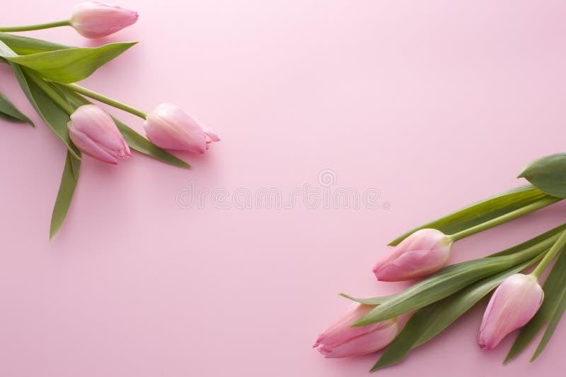 Ein Paar des rosafarbenen Tulpeblumenstraußes lizenzfreie stockfotografie