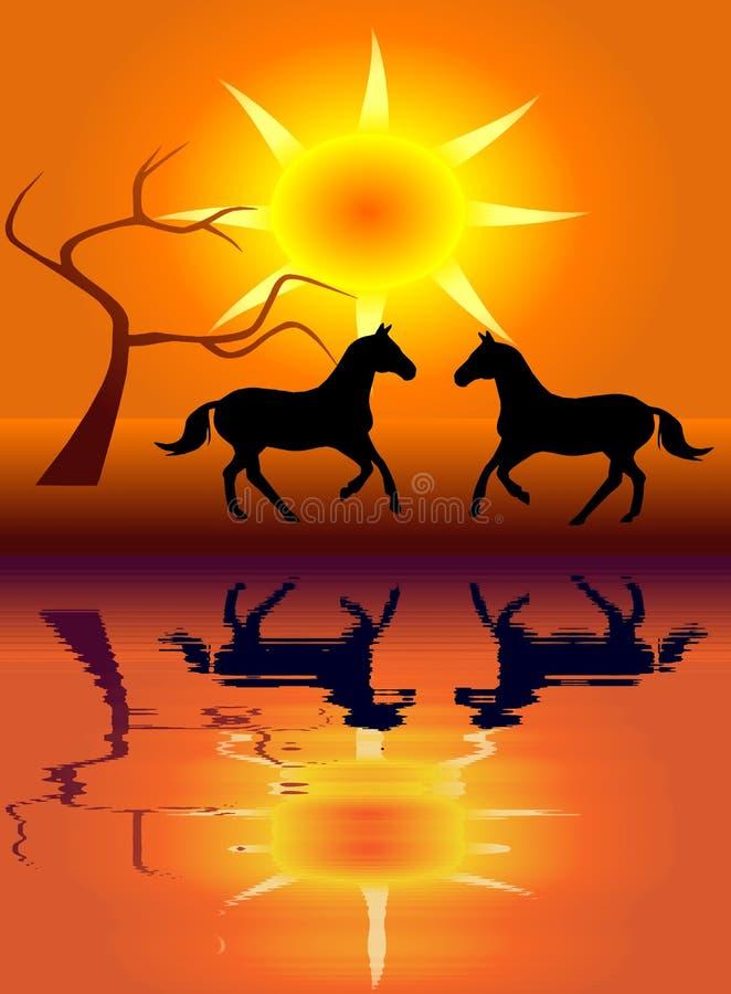 Ein Paar Pferde vektor abbildung