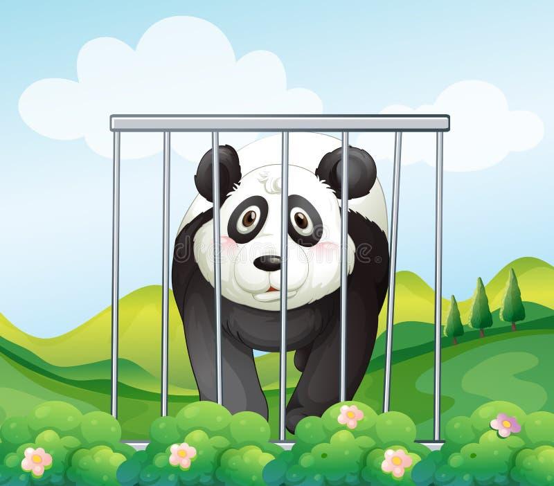 Ein Panda innerhalb des Käfigs stock abbildung