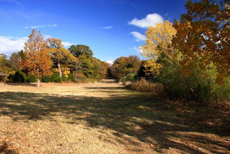 Ein Park im frühen Fall lizenzfreie stockfotos