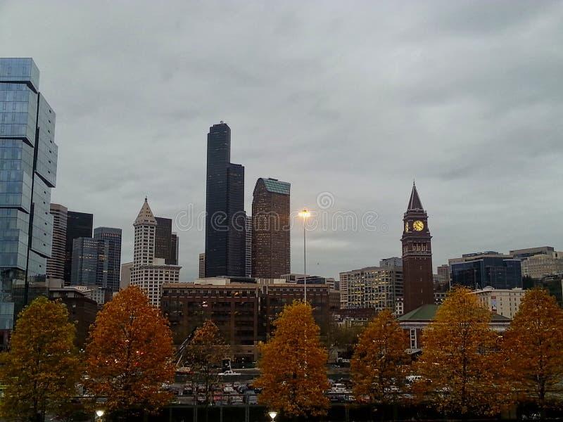 ein Park im Herbst mit Bäumen und Wolkenkratzern lizenzfreie stockfotos