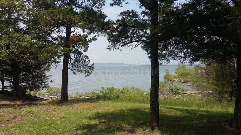 Ein Park am See lizenzfreie stockbilder
