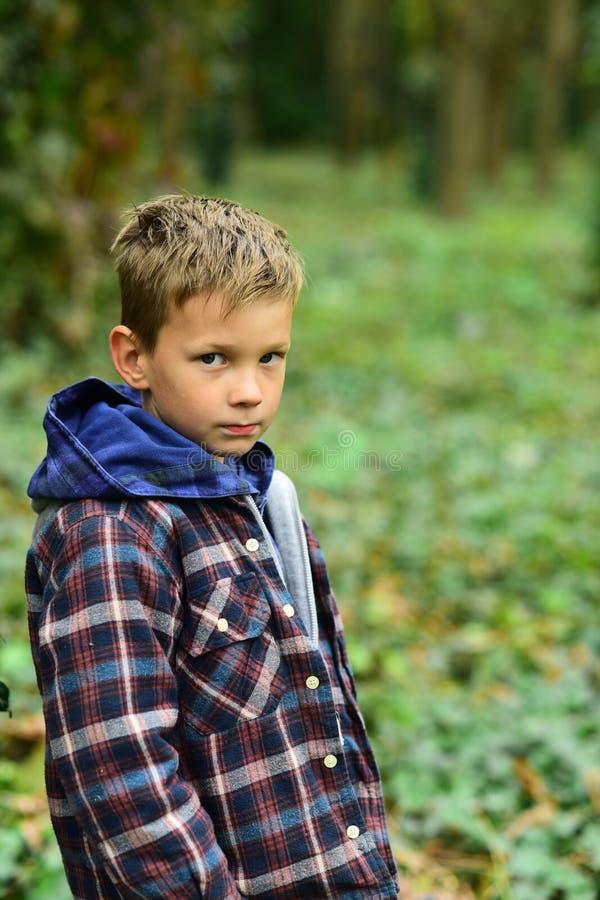 Ein perfekter Tag für das Kampieren Gegangenes Kampieren des kleinen Jungen im Holz Kleiner Junge, der im Herbstwald genießt Camp stockbild