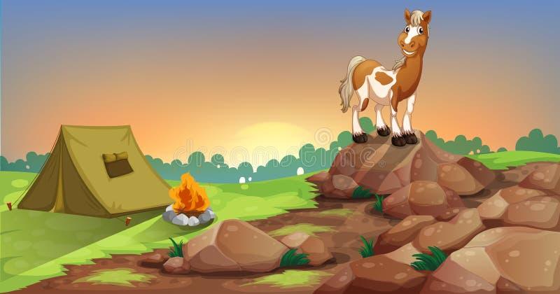 Ein Pferd über einem Felsen nahe einem Campingzelt lizenzfreie abbildung