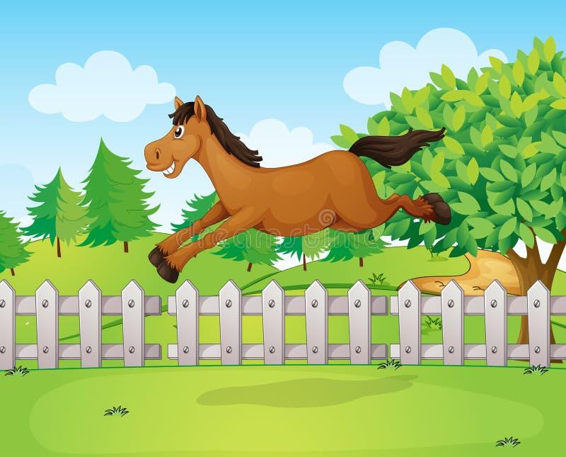 Ein Pferd, das über den Zaun springt stock abbildung