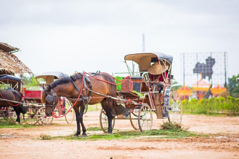 Ein Pferd und ein sch?ner alter Wagen im alten Bauernhof stockfotografie