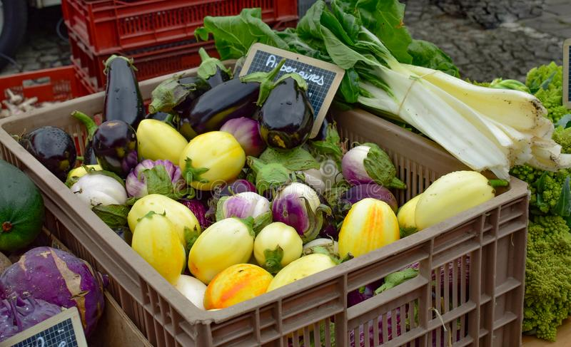 Ein Plastikkorb mit Kürbis und unterschiedlichem Gemüse stockbild