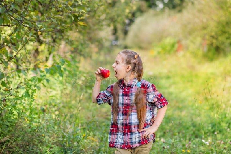 Ein Portr?t von einem netten M?dchen, das einen Apfel in einem Bauernhofgarten isst lizenzfreie stockbilder