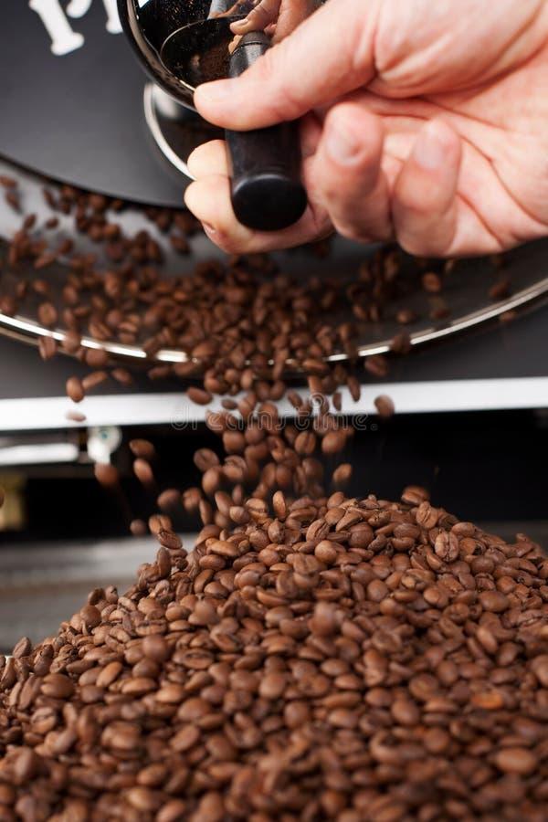 Ein Prozess, zum des Ringes zu filtern die Röstkaffeebohnen lizenzfreie stockfotos