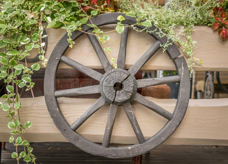 Ein Rad von einem Warenkorb, der an einem Zaun mit Anlagen hängt lizenzfreie stockfotos
